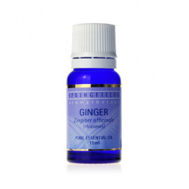 Ginger 11ml